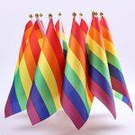 Whaline 3 x 5 ft Gay Pride Rainbow Drapeau avec 10 Pack Pride Agitant Festival Polyester Drapeau de la marque Whaline image 4 produit