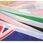 World of Bunting 2018Coupe du monde de football féminin fanions Russie Football Bannière Tissu 6m avec toutes les équipes de 32Petits drapeaux 10cm x 15cm de la marque World of Bunting image 2 produit