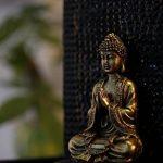 Zen Light ZENITUDE Fontaine Polyrésine Noir 31 x 31 x 42 cm de la marque Zen Light image 1 produit